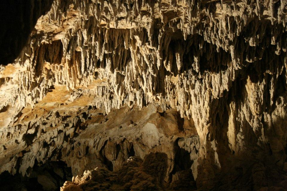 Que ver en las cuevas de Urdax