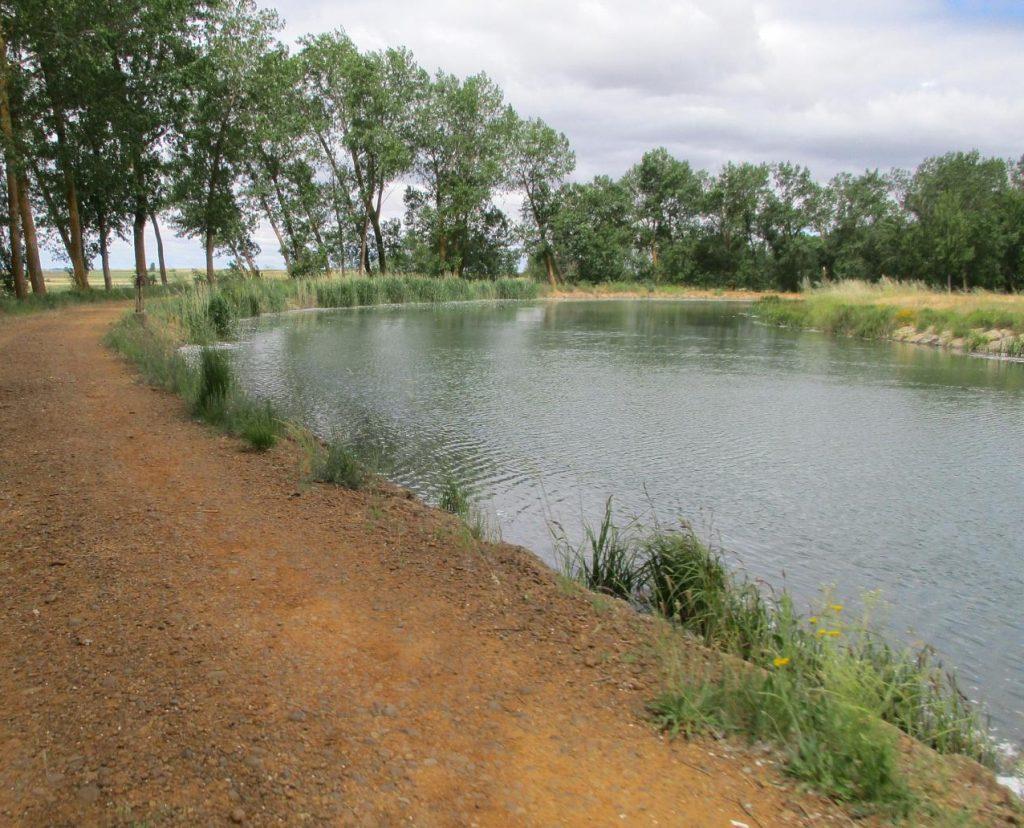 Canal-de-Castilla-e1554154410102-1024x828 ▷ Que ver en Becerril de Campos