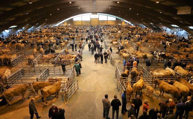 Mercado de ganado de Pola de Siero