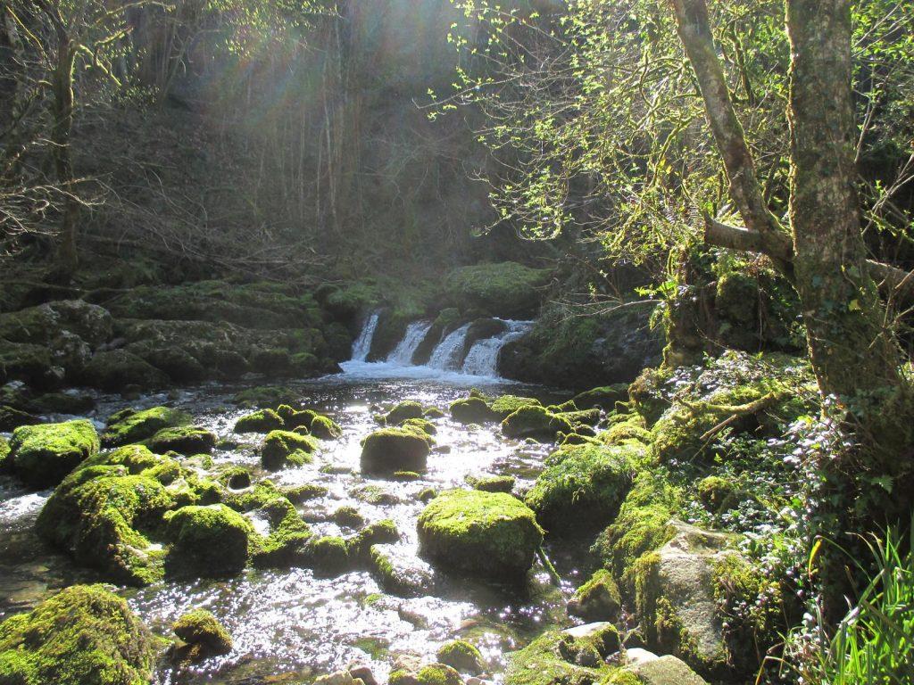 Fuente Obaya